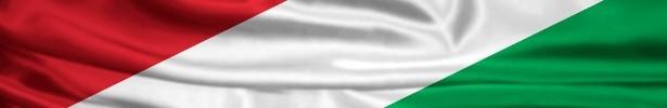 Ungheria Flag