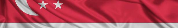 Gran Premio di Singapore 2014 - ANTEPRIMA 1