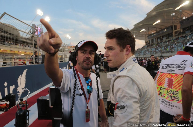 F1 | Fernando Alonso: Stoffel è stato molto bravo, ma non massacrate Jenson